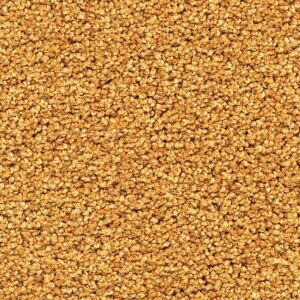 Tessera_Sheerpoint_1196_wheat